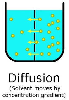 the principals and practices of diffusion and osmosis Facilitated diffusion involves transport proteins, and active transport does not active transport requires energy from atp, and facilitated diffusion does not facilitated diffusion can move solutes against a concentration gradient, and active transport cannot.