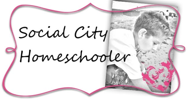 Social City Homeschooler