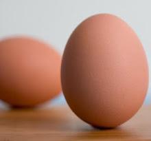¿Sabes cómo se consiguen los huevos y qué significan los números que llevan impresos?