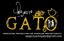 PROYECTO GATO - VIGO