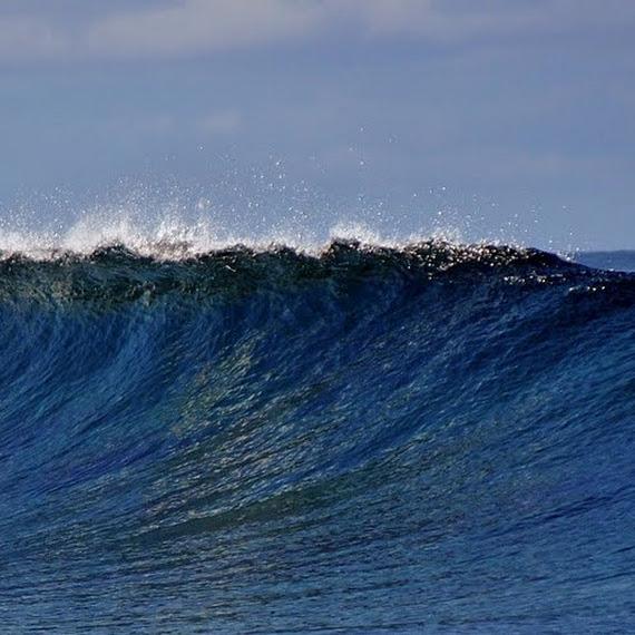 olahraga keren surfing