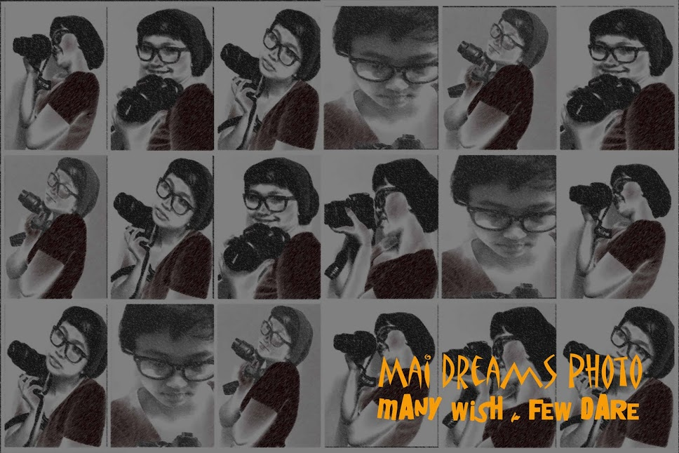MAI dreams photo