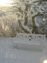 Rofylld vintermorgon