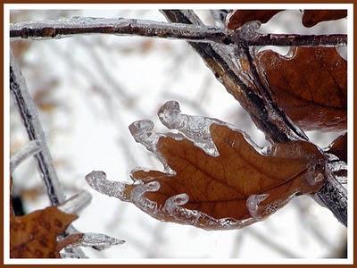 Indahnya badai es