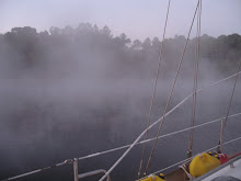 'Fog on the Great Dismal Swamp Route