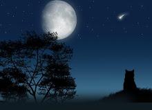 DESIDERIO = che riguarda le stelle
