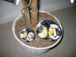gatitos en las piedras
