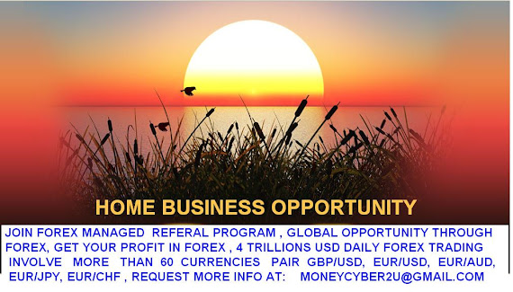 FOREX HOME BASE BUSINESS GLOBAL