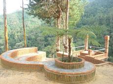 Diseñado para escuchar los cantos matinales y vespertinos de las familias de monos aulladores.