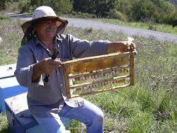 Αρκαδικό Μέλι