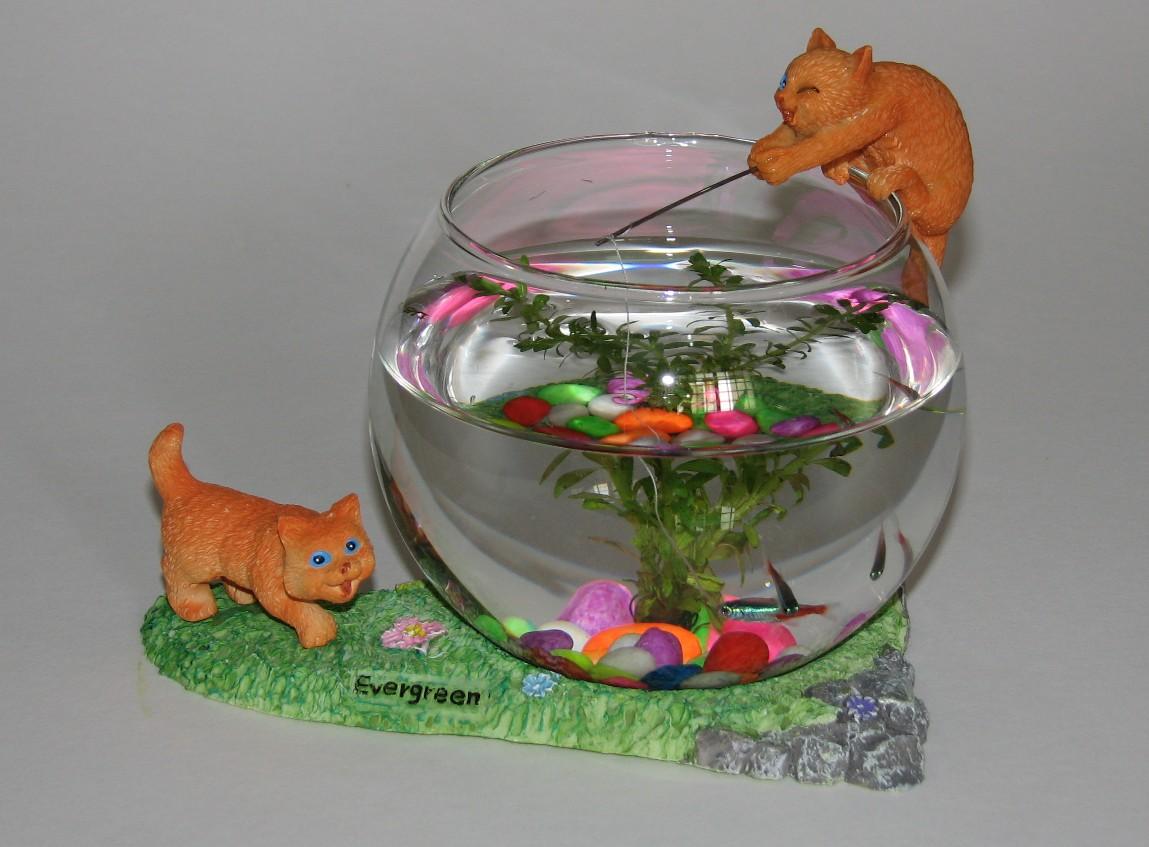 Onelink mall mini aquarium for Mini aquarium