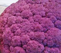 Purple Broccoflower