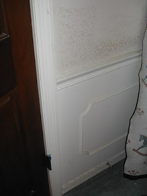 This photo shows the original chair rail, before we started painting: