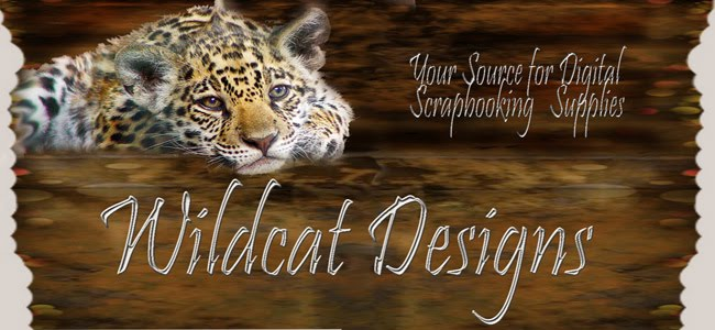 Wildcat Designs