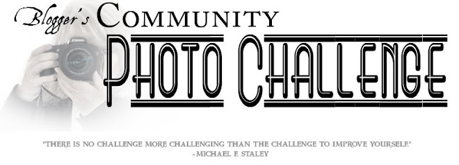 Bloggers Community Photo Challenge