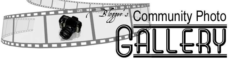 Bloggers COMMUNITY PHOTO GALLERY
