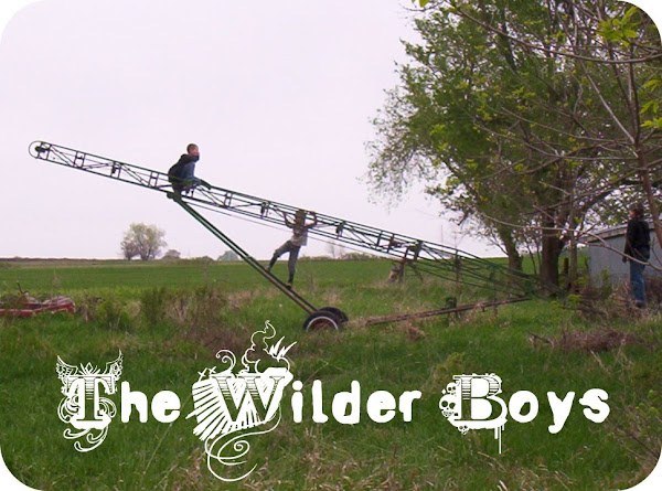The Wilder Boys