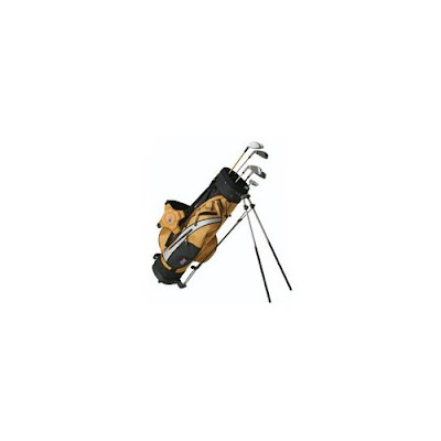 University of Idaho Vandals colored golf bag that is gold and black.