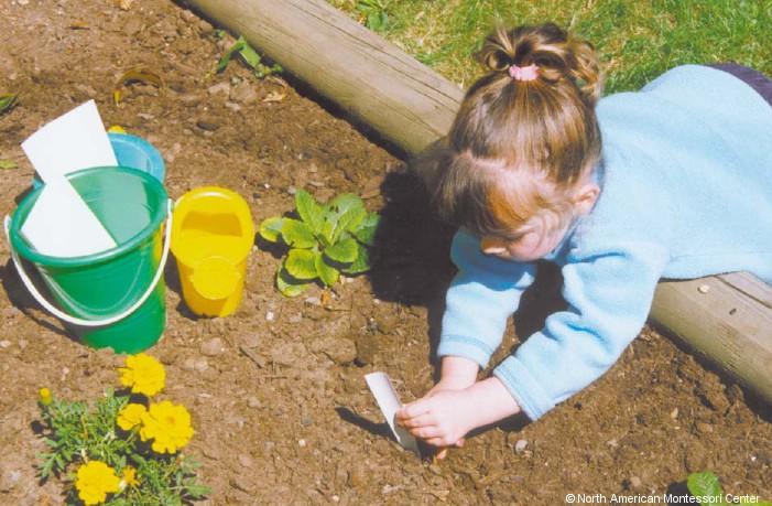 NAMC Montessori Preschool Classroom Routine Schedule Planning Girl Gardening