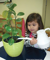 NAMC montessori classroom parent observer girl watering helpful tips plants