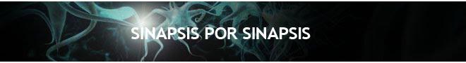Sinapsis por sinapsis