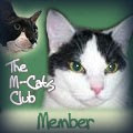 M-Cat Club Member