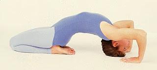 Integral Yoga Distribution Virginia