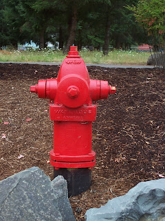 Fire Hydrant, Clackamas, Oregon
