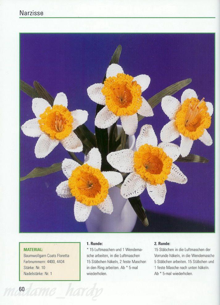 [flores19.jpg]