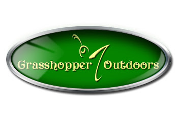 Grasshopper outdoors