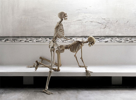 [ภาพ: Skeleton-on-Sex----.jpg]