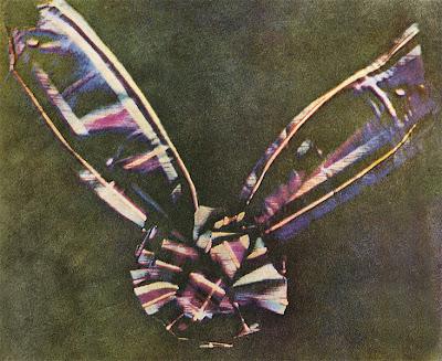 ภาพถ่ายสี ภาพแรกในโลก (First Color Photo)