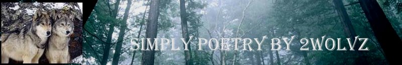 simply poetry by 2wolvz