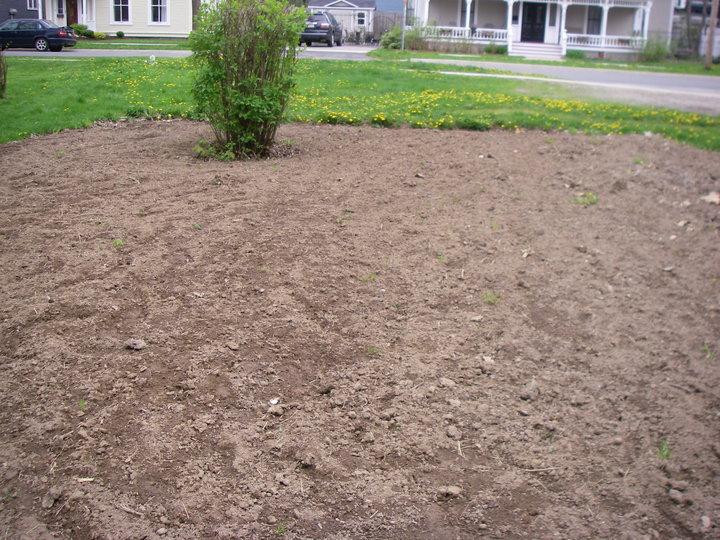 Landscape Empty Backyard : Landless Gardeners 61310  62010