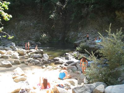 Swimming Holes Of California San Lorenzo River Garden