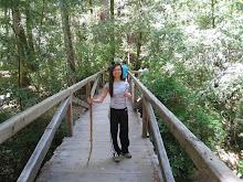 Hike Leader