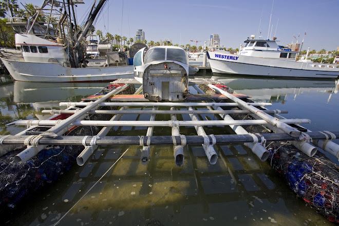 Junk Floats
