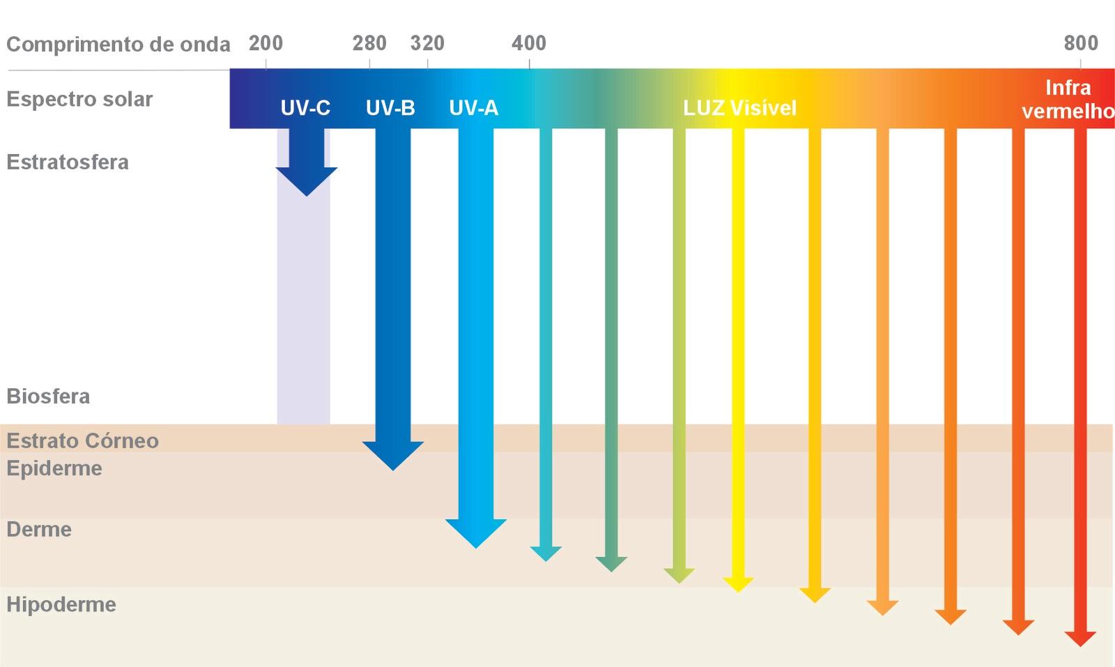 5635dcd331769 Já o UVB causa a vermelhidão, tem ação imediata e é mais intenso entre 10h  e 16h. Por isso, o ideal é usar filtro solar com as duas proteções.