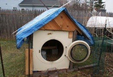 Georgia Dog House