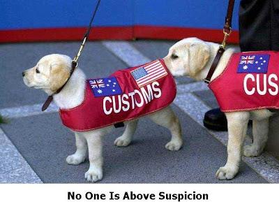 No One Is Above Suspicion!