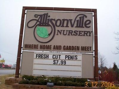 Fresh Cut Penis