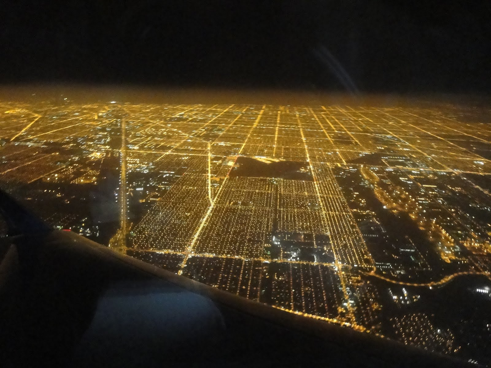 Live to Garden: Chicago at Night