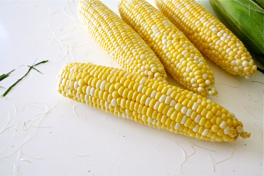 Freezer Corn – MADE EVERYDAY
