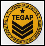 TEGAP SECURITY SERVICES
