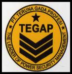 TEGAP SECURITY SERVICES