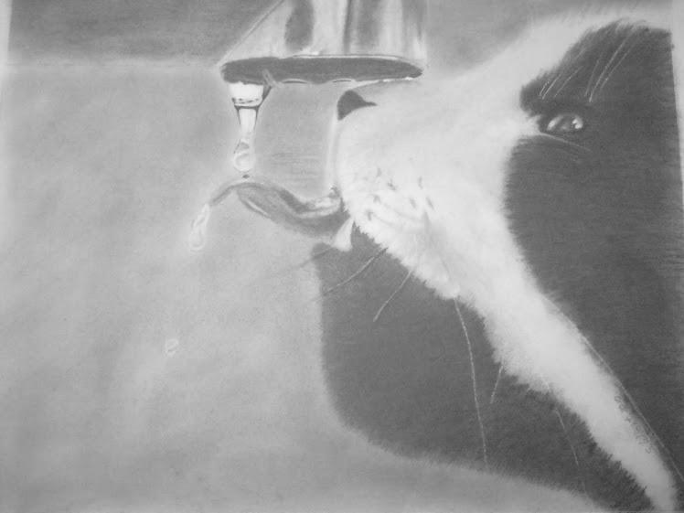 Thirsty Kitty