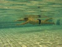 apprendre à nager crawl