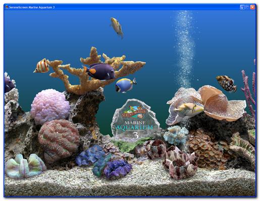 animated aquarium wallpaper. dresses aniPet Aquarium Live