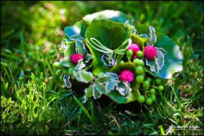 botanical ring pillow