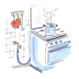 Fatti e parole giugno dicembre 2009 l uso domestico del - Tubo gas cucina lunghezza massima ...